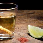 El gusano y el alcohol