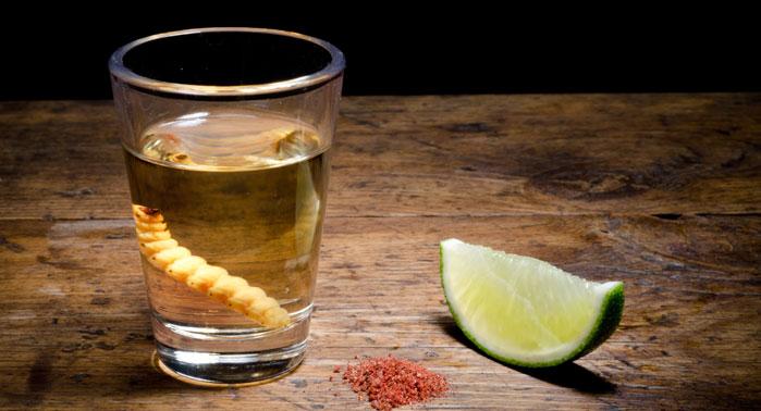 Gusano y Alcohol