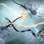 Epilepsia infantil: Más allá del respeto a la diferencia