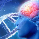 La revolución de las Neurociencias: el futuro de la psicoterapia