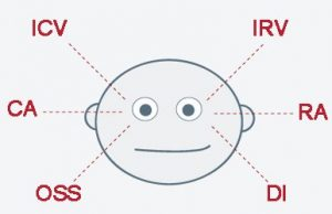 Cómo detectar mentiras según la mirada
