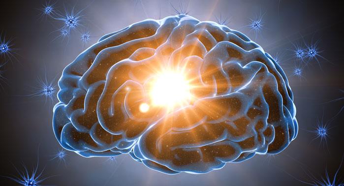 cerebro más productivo