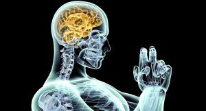 Nootrópicos, ¿realmente mejoran el rendimiento del cerebro?