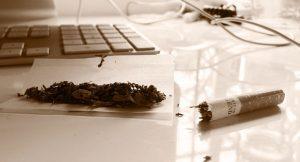 Desde que se legalizó la marihuana en Holanda el consumo de drogas duras ha disminuido