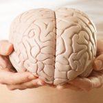 Desarrollo Cognitivo en la Adultez y envejecimiento: Teoría y Estadios