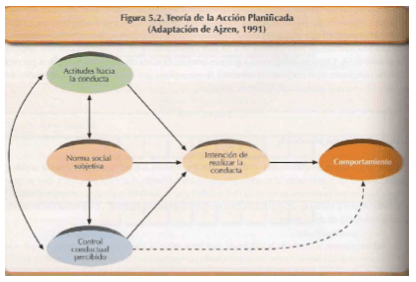 teoria-accion-planificada