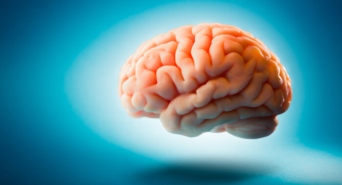 procesamiento-cognitivo