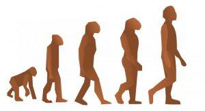 Psicología de la Adaptación: Evolución y origen de la Psicología